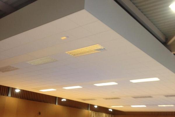 plafonds-laine-de-roche-ekla-la-gyonniere-salle-de-sport-holding-pichaud-vinet-2514384DB-AA2D-B029-5588-D6655D4359C7.jpg