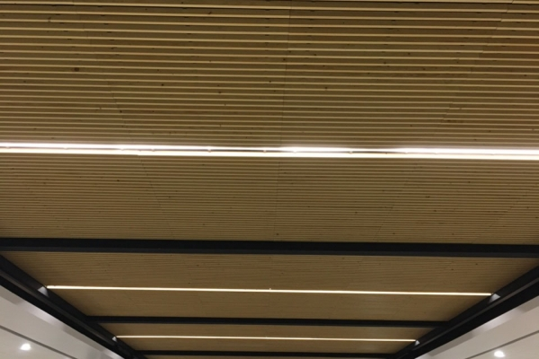 plafonds-bois-salle-herbauges-les-herbiersCC583EB3-8FDC-1FE3-CBFB-827861AACFBA.jpg