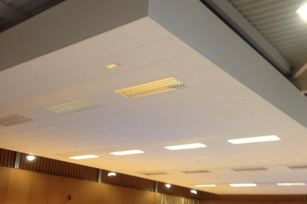 plafonds-laine-de-roche-ekla-la-gyonniere-salle-de-sport-holding-pichaud-vinet-24D0D75E6-7CCD-F7F0-F70E-811A183DADEA.jpg