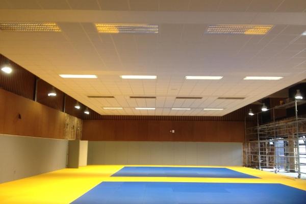plafonds-laine-de-roche-ekla-salle-de-sport-la-gyonniere-holding-pichaud-vinet94E6826D-5BA4-CE67-0FE9-207706937778.jpg