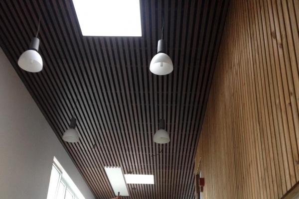 plafonds-bois-chateau-d-olonne-piscine-plafond-bois-holding-pichaud-vinet8009EAAE-32BA-AAD0-57F7-B97D43250732.jpg