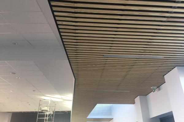 plafonds-bois-hoding-pichaud-vinet-3229EBB38-5A7F-18B7-9FA4-0773DF2B5204.jpg