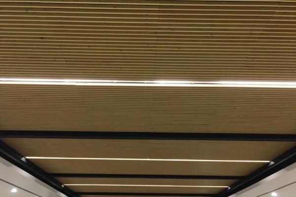 plafonds-bois-salle-herbauges-les-herbiersB231534E-4869-99E1-0A6C-A2D0ED7F16F0.jpg